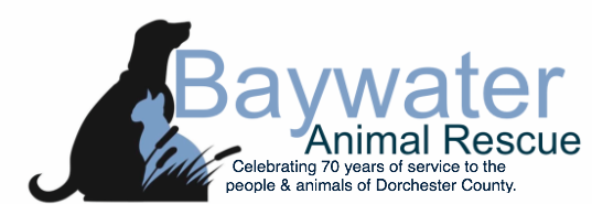 Baywater Animal Rescue - Leading No Kill Shelter on Eastern Shore of MD