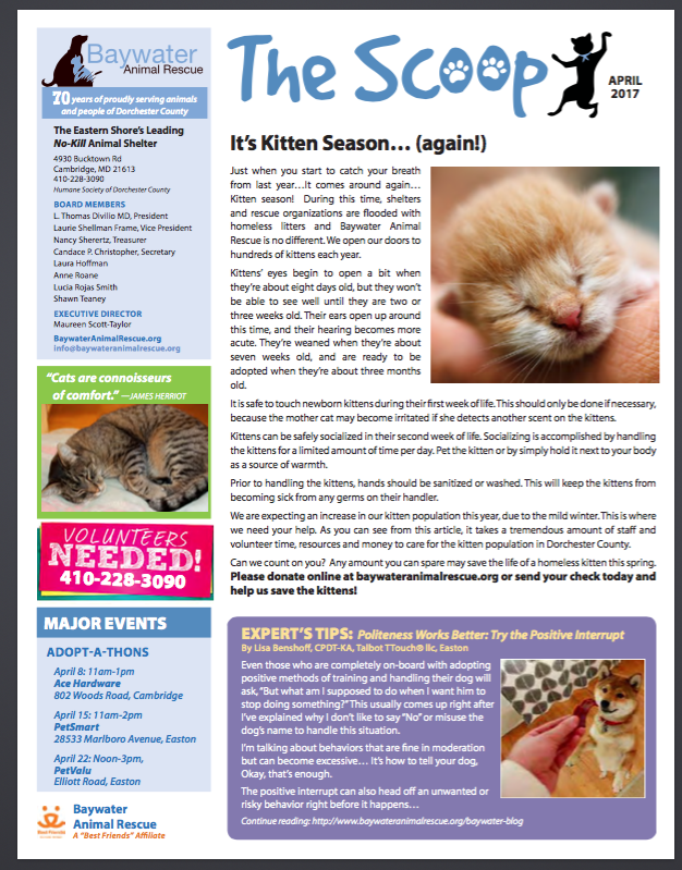The Scoop - Baywater Animal Rescue newsletter - Baywater Animal Rescue